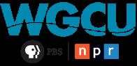 "1pm WGCU-FM ""GulfCoast Live!"" Interview"
